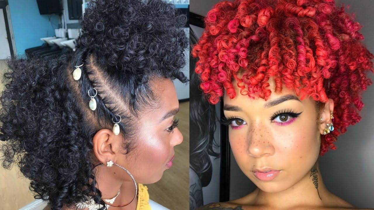 Pictures Of Natural Hair Styles For Black Women Fashion Digger